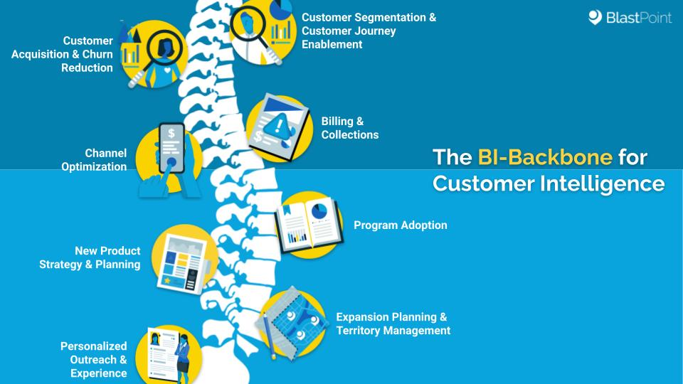 Backbone image representing the solid data infrastructure through which customer intelligence functions